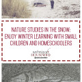 Nature Studies in the Snow