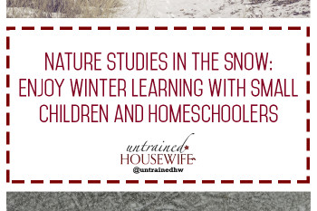Nature Studies in the Snow: Enjoy Winter Learning With Small Children and Homeschoolers