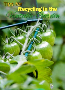 Tips for Recycling in the Vegetable Garden