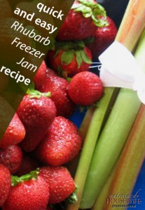 Quick and Easy Rhubarb Freezer Jam Recipe