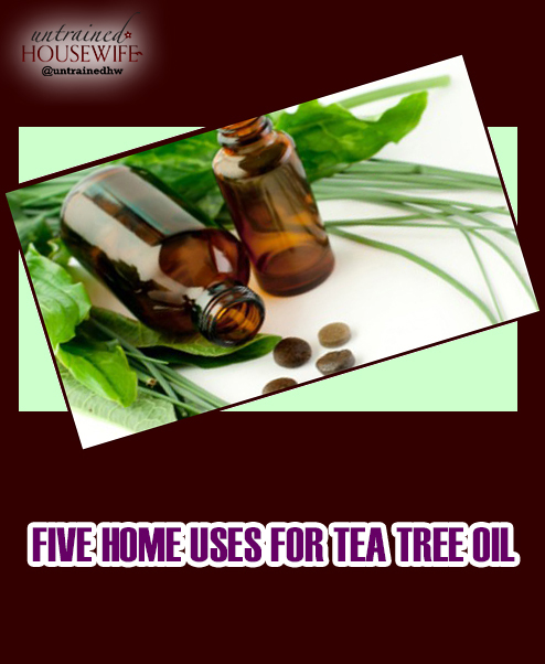 Five Home Uses for Tea Tree Oil