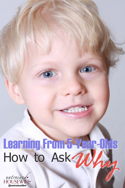 Learning From 5-Year-Olds: How to Ask Why