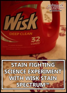 Stain Fighting Science Experiment with Wisk Stain Spectrum