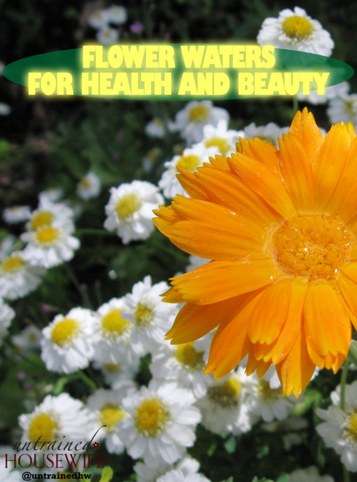 Flower Waters for Health and Beauty