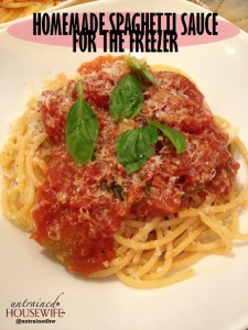 Homemade Spaghetti Sauce for the Freezer