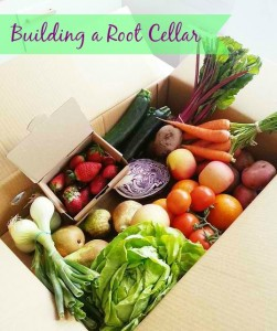Building a Root Cellar