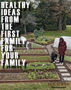 Review of The White House Garden Cookbook: Healthy Ideas From the First Family For Your Family