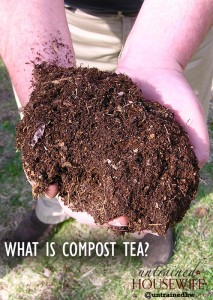 What is Compost Tea?