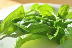 12 Uses for Fresh Basil