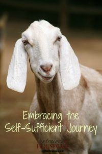 Embracing the Self-Sufficient Journey