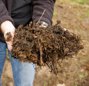 "What is ""Good"" Garden Soil?"