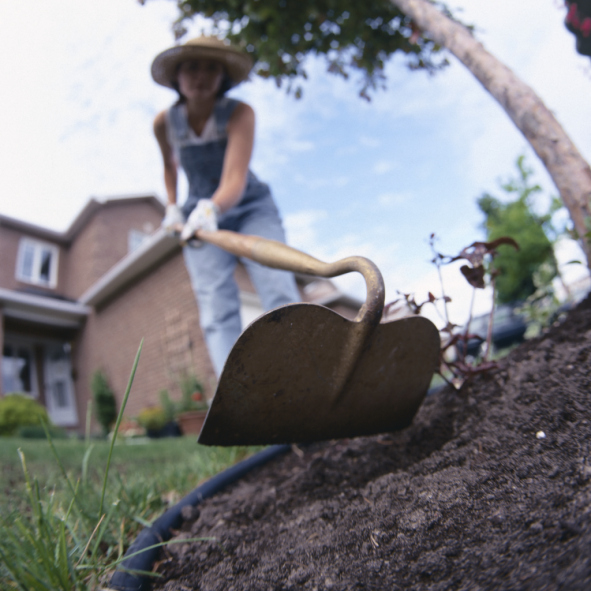 Dark rich soil provides a good foundation for your garden spaces.