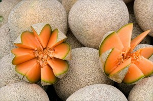 Growing Melons in the Home Garden