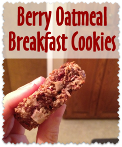Healthy Berry Oatmeal Breakfast Cookies