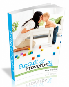 Pursuit of Proverbs 31: A Book Review