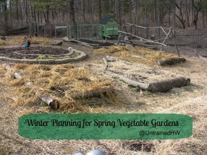 Winter Planning for Spring (and Summer!) Vegetable Gardens