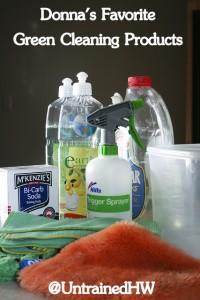 Donna's Favorite Green Cleaning Products