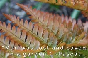 Lost and Saved in a Garden Quote