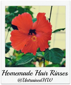 Hibiscus Flowers for Herbal Hair Rinses