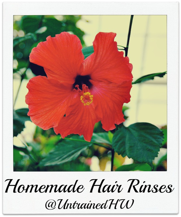 How To Make A Homemade Hair Rinse
