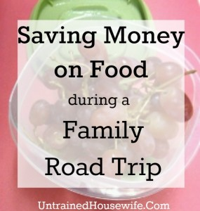 Save Money on Food During a Family Road Trip