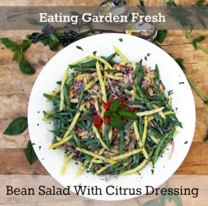 Bean Salad With Citrus Dressing Eating Garden Fresh