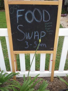My Journey to Launch a Food Swap Event