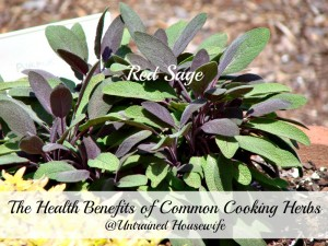 8 Common Cooking Herbs and Their Health Benefits