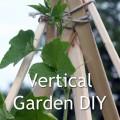 Vertical Gardening DIY Teepee