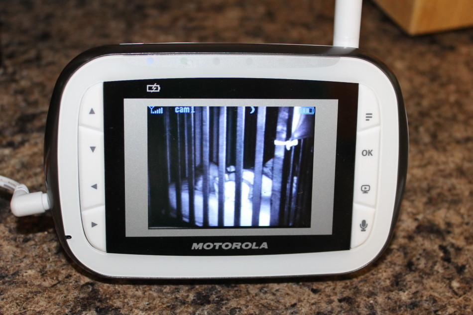 motorola mbp 41 video baby monitor review. Black Bedroom Furniture Sets. Home Design Ideas