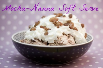 Easy Homemade Blender Ice Cream – Mocha-Nanna
