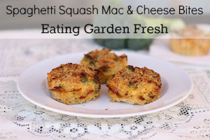 Spaghetti Squash Mac and Cheese Bites Recipe