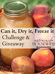 August Challenge – Can it, Freeze it, Dry it!
