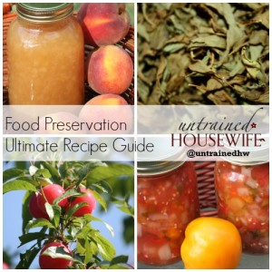 Food Preservation Untrained Housewife Ultimate Recipe Guide