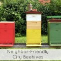 Neighbor Friendly Beehives in the City