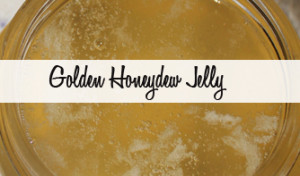Golden Honeydew Jelly