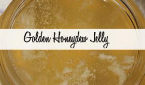 Golden Honeydew Jelly