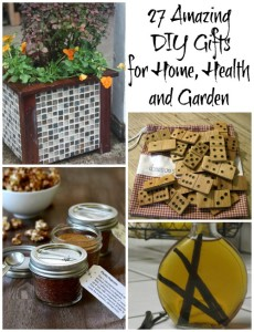 27 amazing DIY Gifts for home, health and garden
