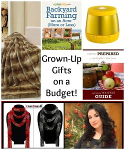 Gifts for Grown-Ups on a Budget – Trends and Tips!