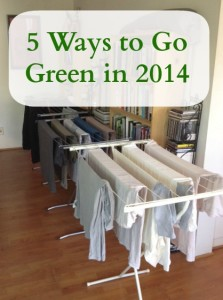 5 Ways to Go Green in 2014