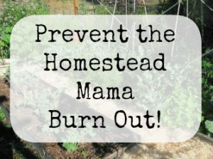 Prevent homestead mama burn-out