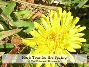 Four Herb Teas for the Spring