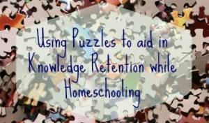 Piecing Knowledge Together: Learning with Puzzles