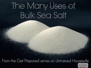 Getting Prepared – Many Uses for Bulk Salt