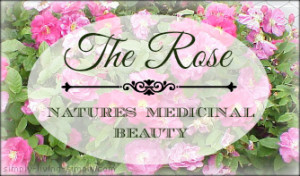 How to Grow Roses for Medicinal Use
