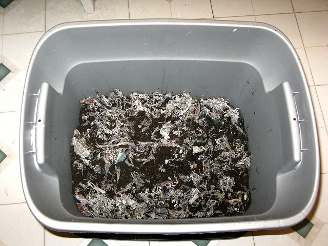 A typical worm bin full of bedding and soil. Photo: jeffschuler / CC by 2.0