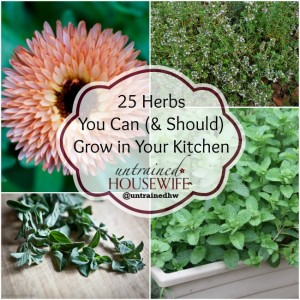 Herbs for your kitchen garden