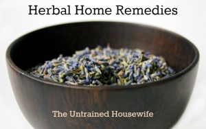 Lavender: Make Your Own Herbal Home Remedies