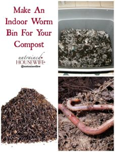 Make An Indoor Worm Bin For Your Compost