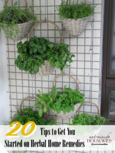 20 Tips to Get You Started on Herbal Home Remedies